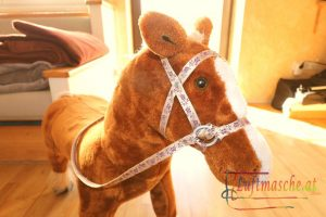 Pferd neues Zaumzeug